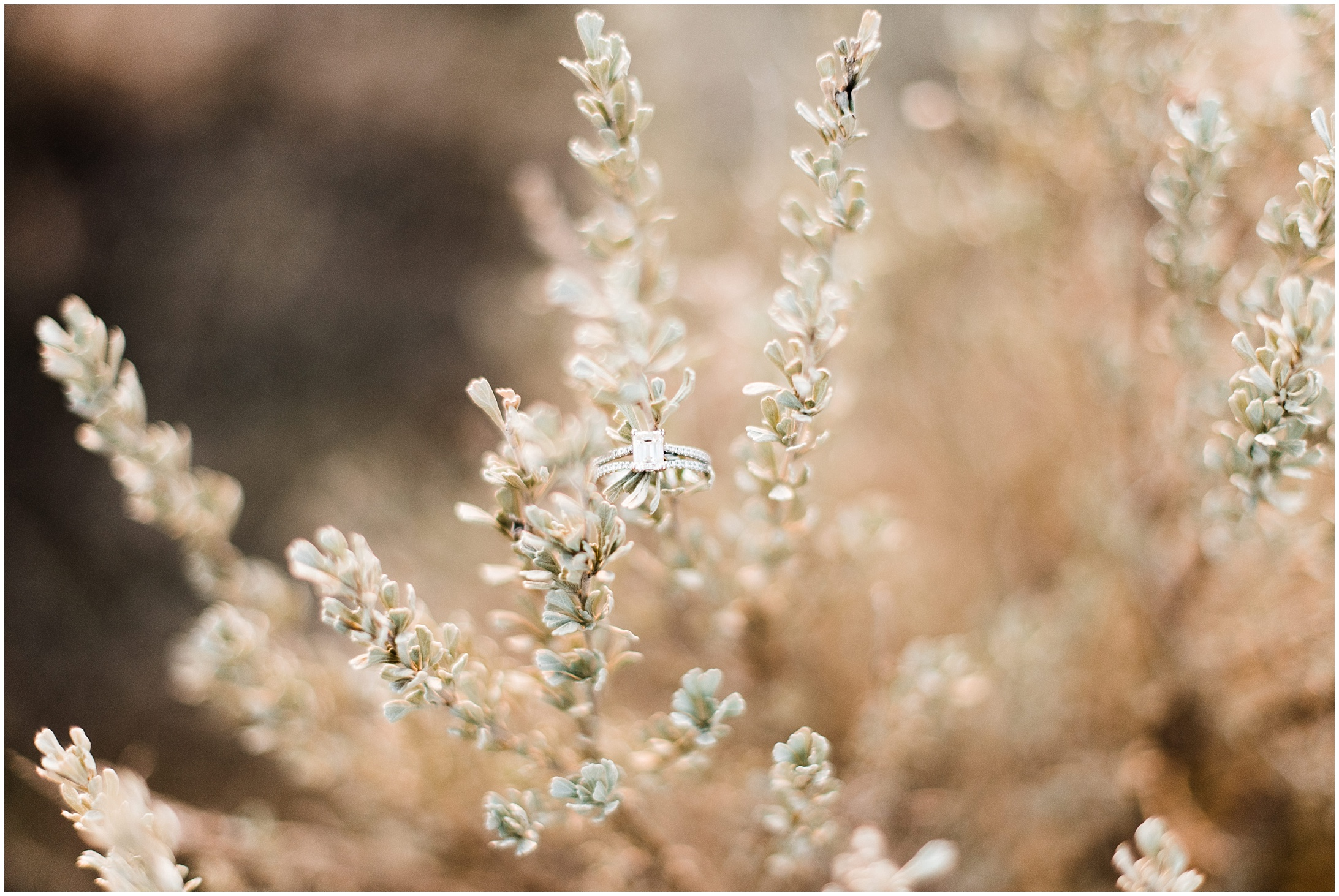Photo of a wedding ring in sagebrush by Forthright Photo
