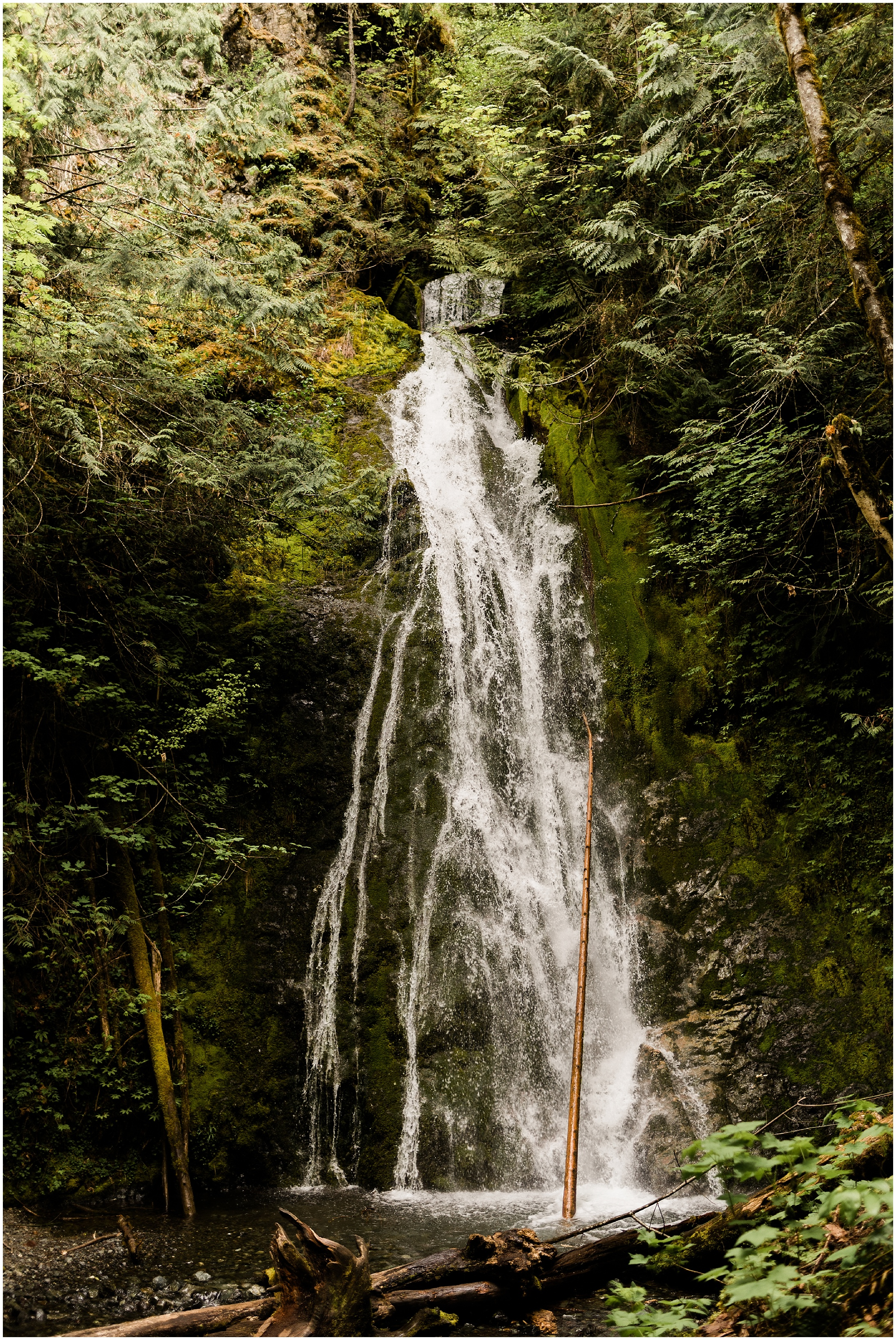 Photo of Waterfall in Olympic National Park by Forthright Photo