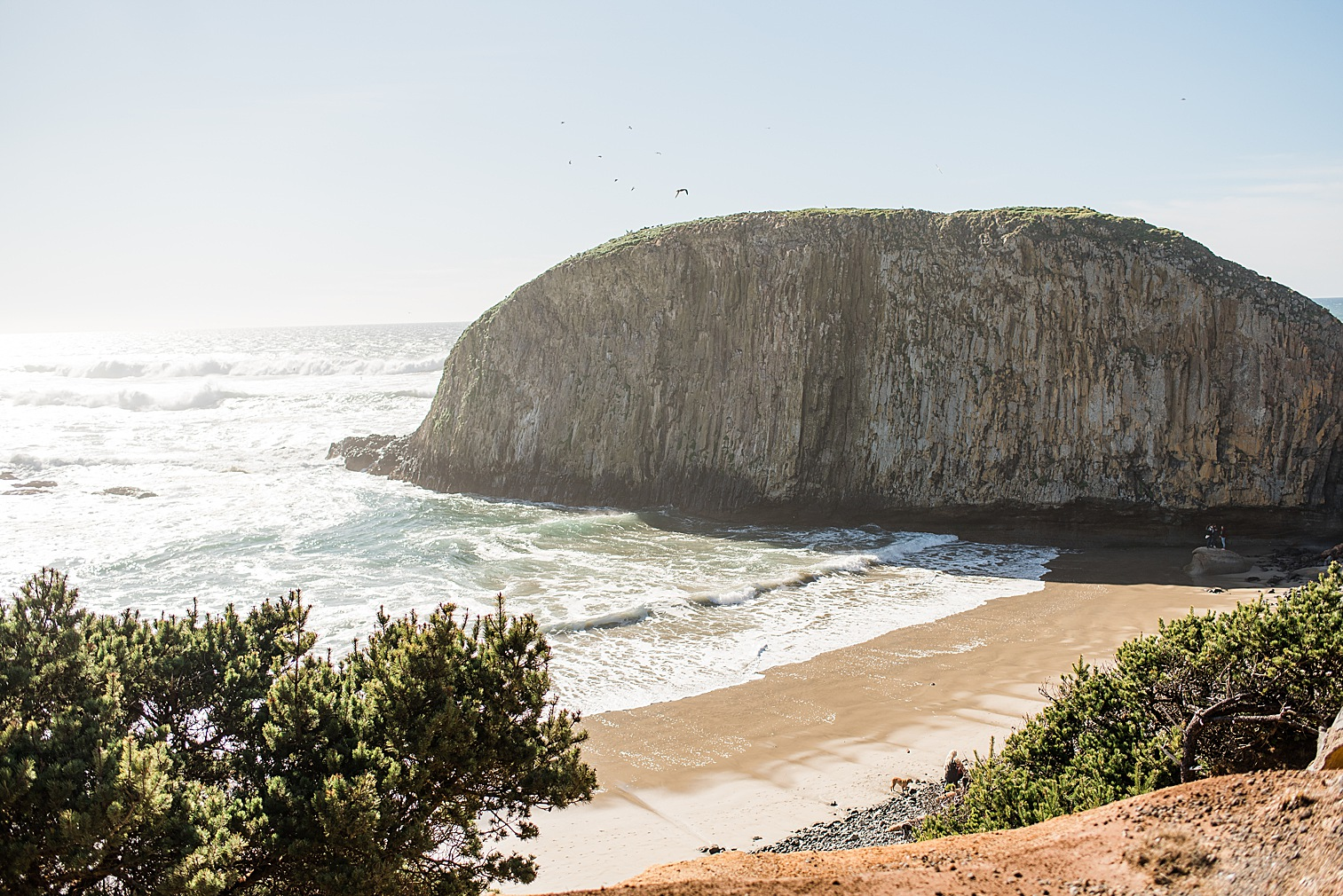 Oregon Coast Elopement Locations & Inspiration - Seal Rock. Image by Forthright Photo