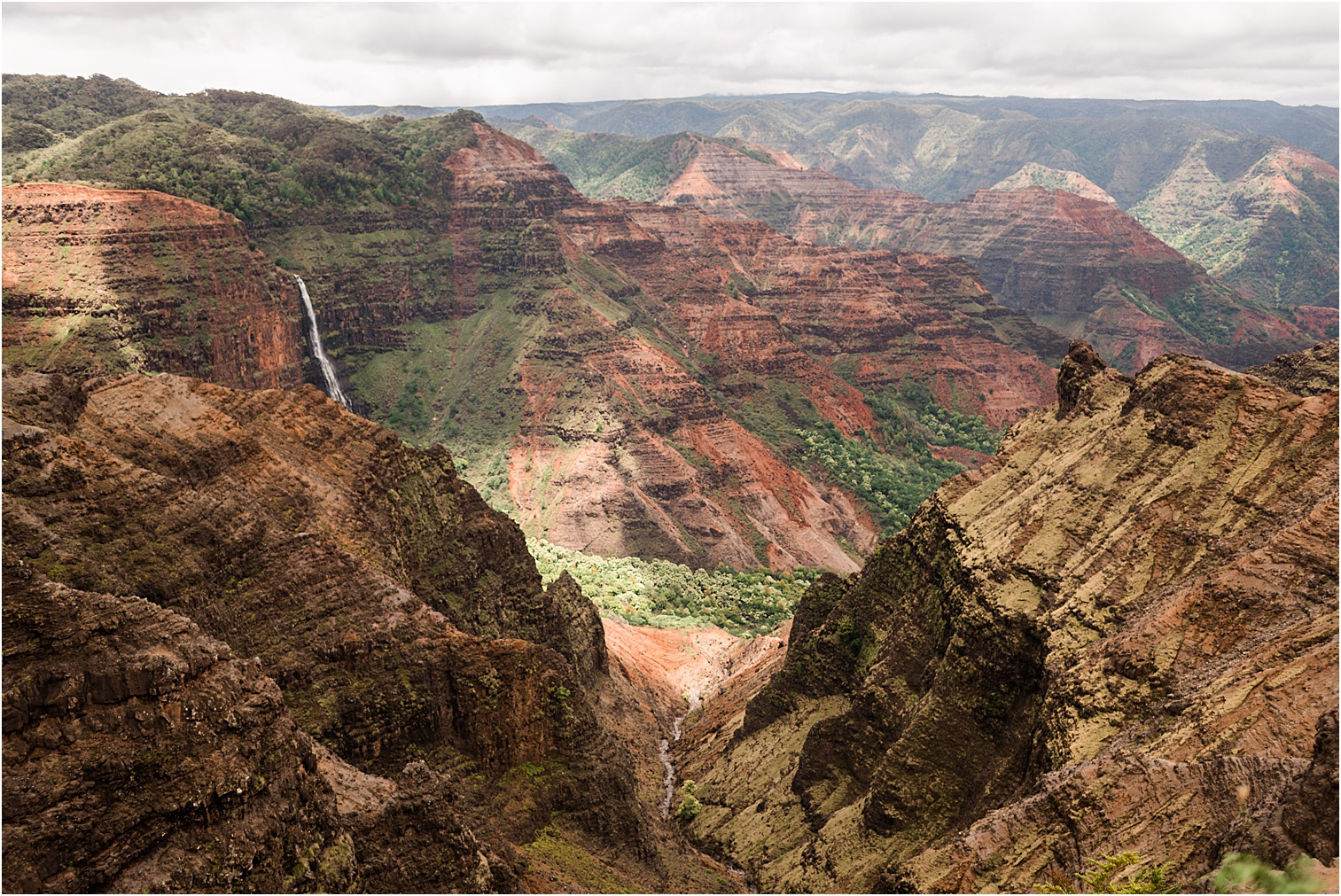 Overlooking Waimea Canyon. Image by Forthright Photo