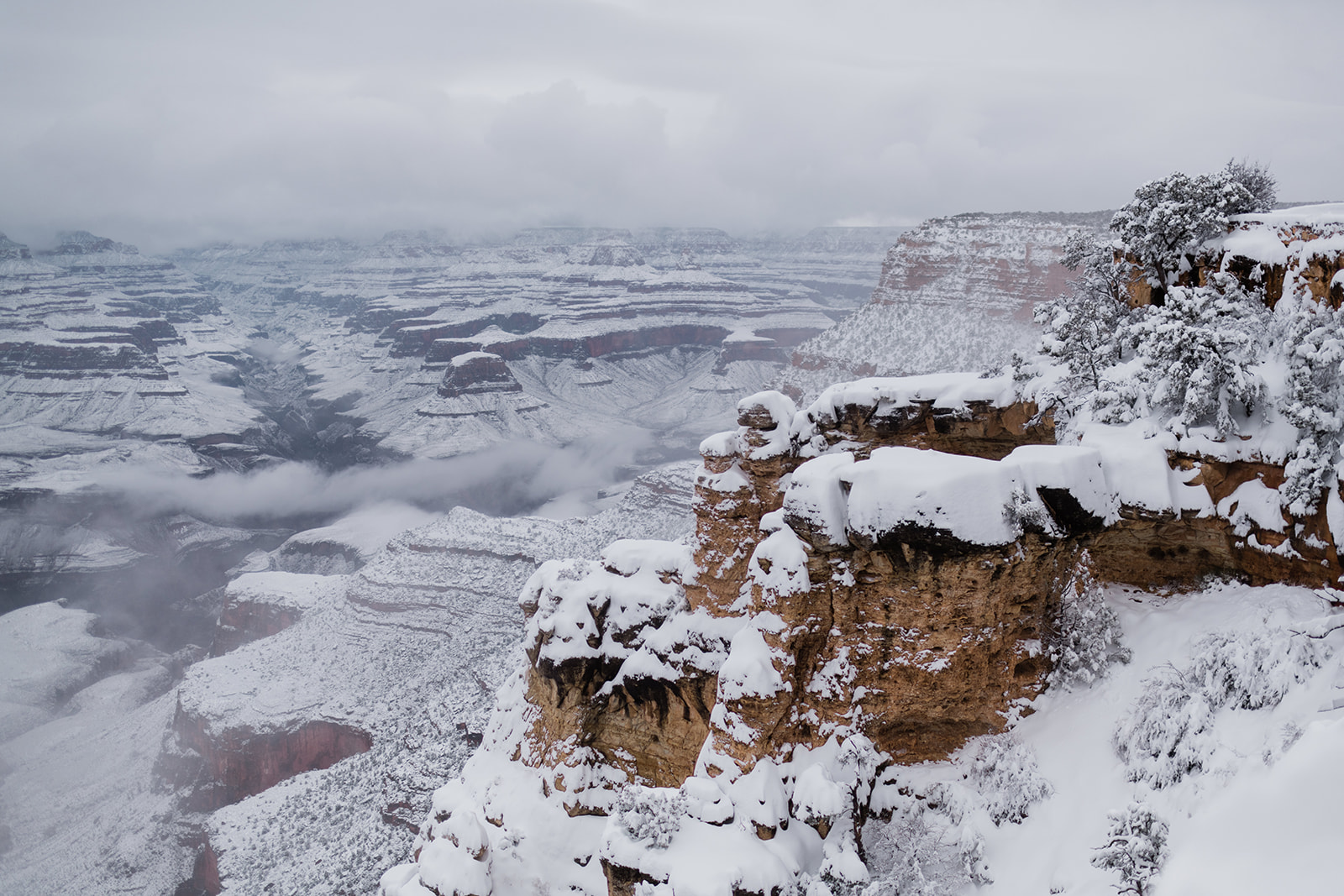 Grand Canyon during winter blizzard. Image by Forthright Photo, wedding and elopement adventure photographers.
