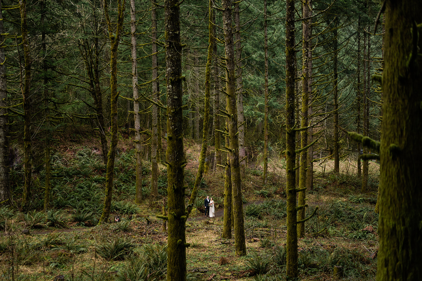 Oregon forest wedding vow exchange. Image by Forthright Photo, Seattle Adventure Photographers.